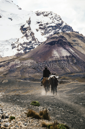 man riding with two horses through