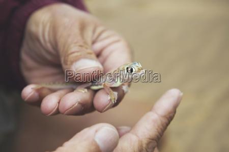 namibia namib desert swakopmund mans hand