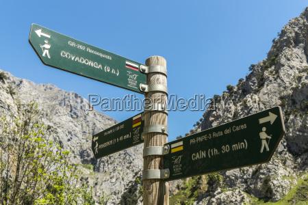 spain asturia picos de europa national