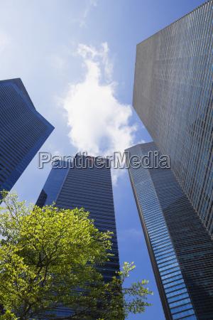 arbol moderno nube singapur etiquetas durante