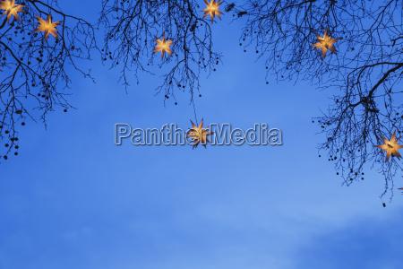 lauende weihnachtssterne haengen in filialen