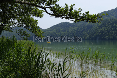 germany bavaria lake weissensee near fussen