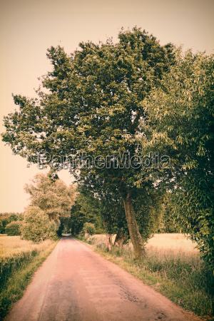 germany north rhine westphalia minden field