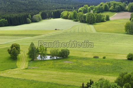 germany lower bavaria bayerischer wald view