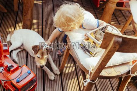 kleiner junge spielt mit jack russel