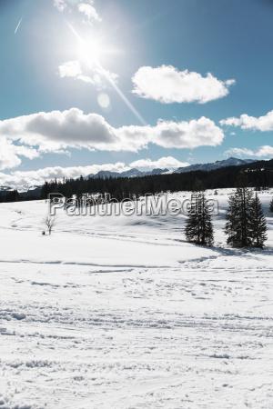 germany bavaria winklmoosalm sunny day in