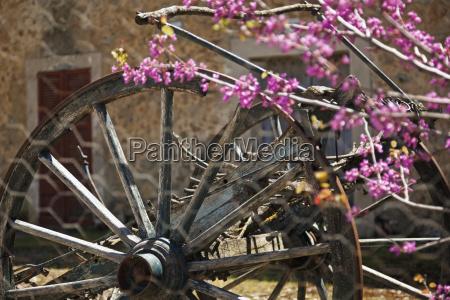 spain mallorca old wood spoke wheel