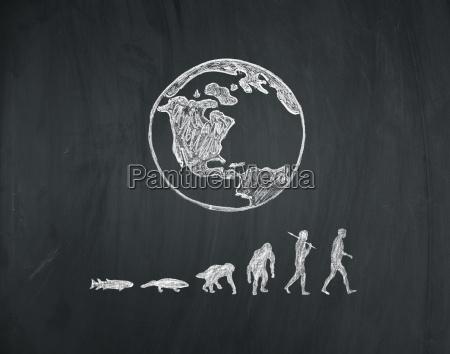 evolution des menschen auf einer tafel