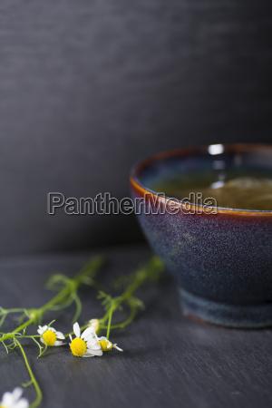 vidrio vaso te beber bebida flor