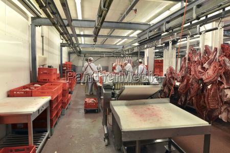 deutschland sachsen anhalt verarbeitung von schweinefleisch