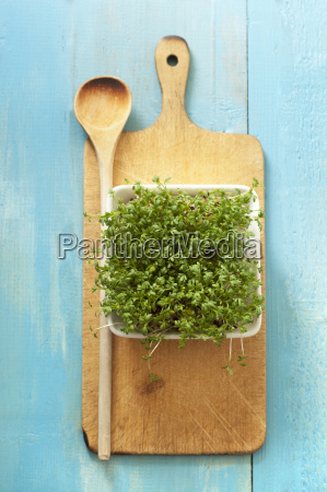 bowl of cress and wooden spoon