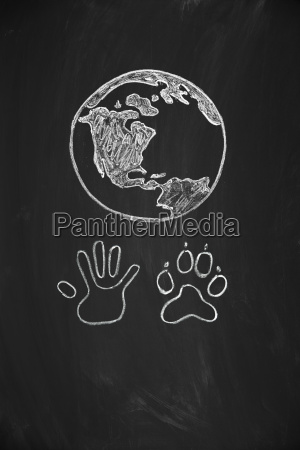menschliche hand und tier pfote vereinigt