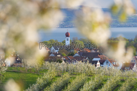 germany view of kressbronn church and
