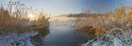 germany ludwigshafen view of lake constance