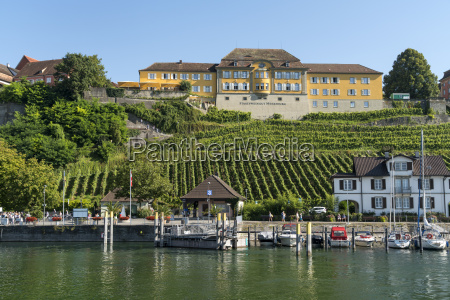 germany meersburg harbour and vineyard