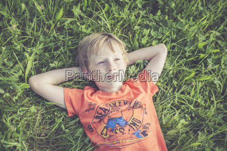 boy lying on a meadow with