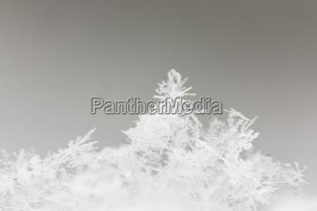 deutschland hessen kristalle von schneeflocken nahaufnahme
