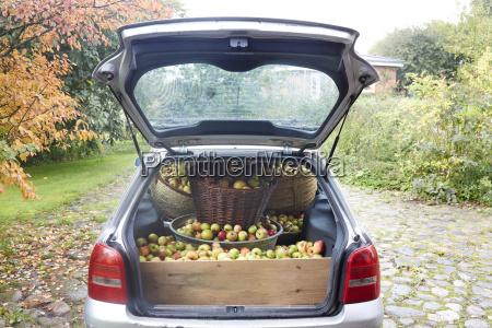 germany schleswig holstein car boot full
