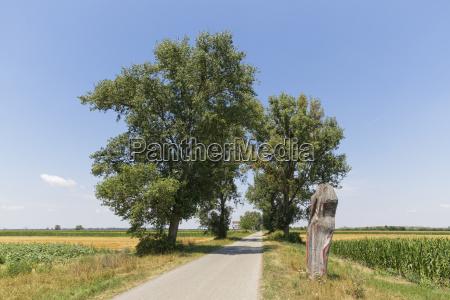 austria burgenland andau rural road