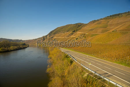 germany rhineland palatinate moselle valley moselle