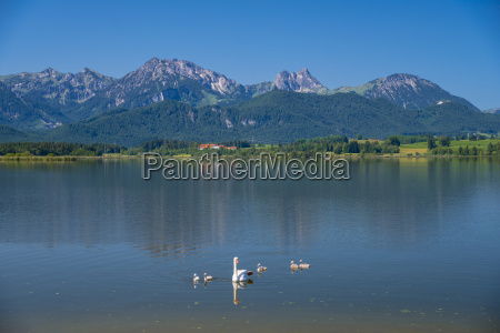 germany bavaria allgaeu east allgaeu lake