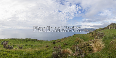 new zealand wellington kapiti makara coast