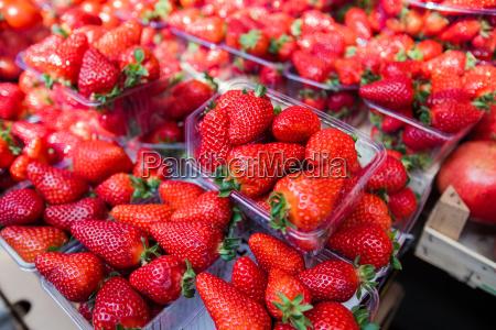frischer erdbeermarkt