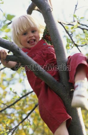 girl 4 5 climbing tree portrait