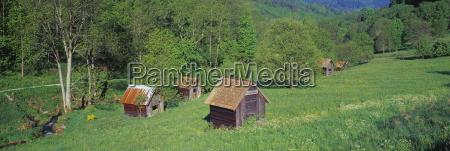 germany baden wuerttemberg schwarzwald barns in