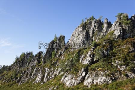 germany bavaria upper palatinate bavarian forest