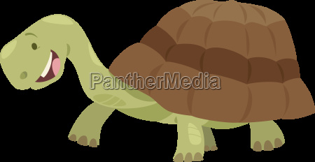 cute turtle animal character