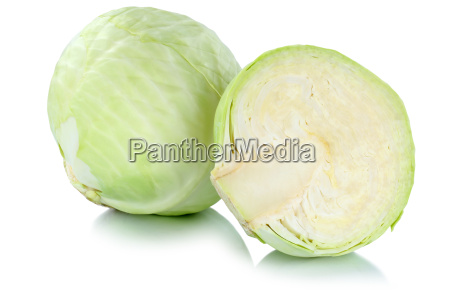 white cabbage white cabbage cabbage freshly
