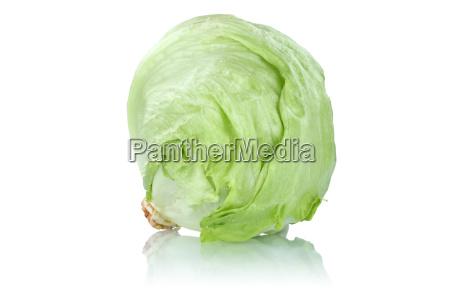 eisbergsalat salat salatkopf gemuese freisteller freigestellt