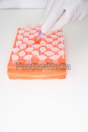 scientist placing test tube in tray