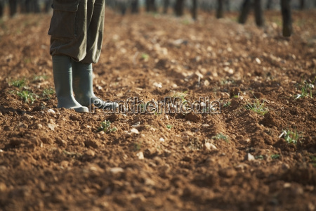 farmer standing on fertile soil in