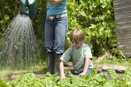 junge gartenarbeit mit mutter bewaesserungsanlagen