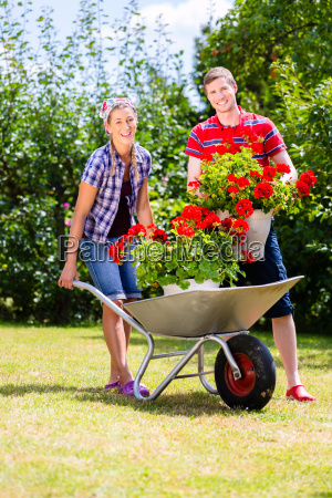 couple in garden with barrow and
