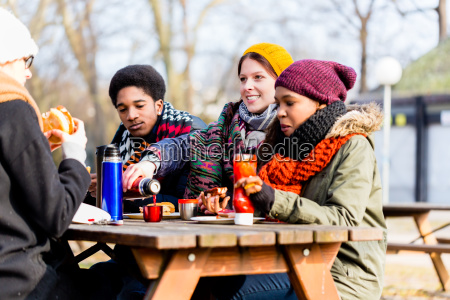 young friends talking at picnic outdoors