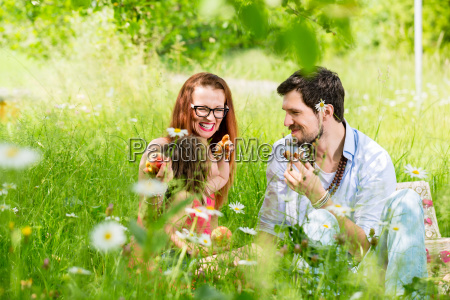 family eating in summer meadow sitting