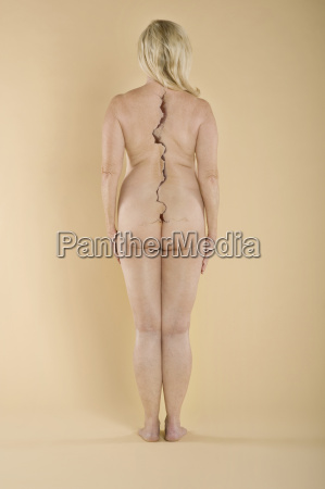 rear view of a nude woman