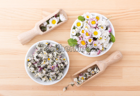fresh and dried daisies