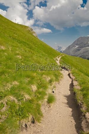 alpine summer landscape