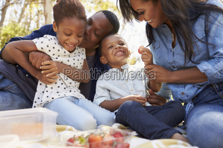 family enjoying summer picnic in park