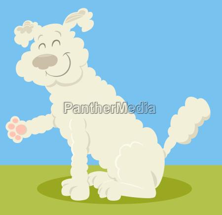 white poodle dog cartoon