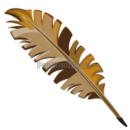 varicoloured feather