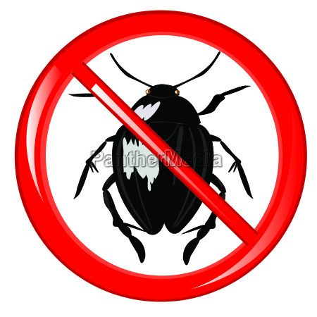 sign insect it is impossible