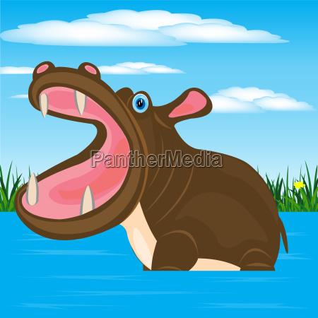hippopotamus im wasser