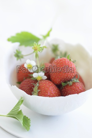 fresh strawberries with flowers in a