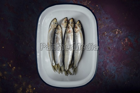 fresh sprats on a plate top