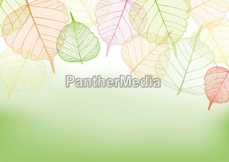 filigree colorful leaves